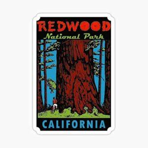 Redwood National Park California Vintage Sticker