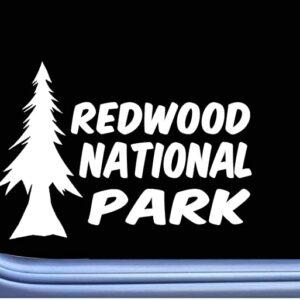 Redwood National Park Tree Sticker