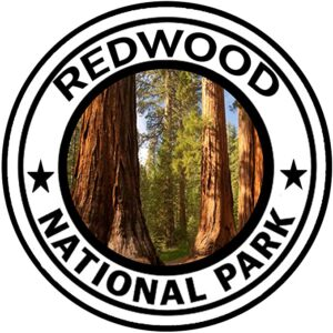 Redwoods National Park Round Sticker