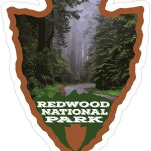 Stormy Redwood National Park Arrowhead Sticker