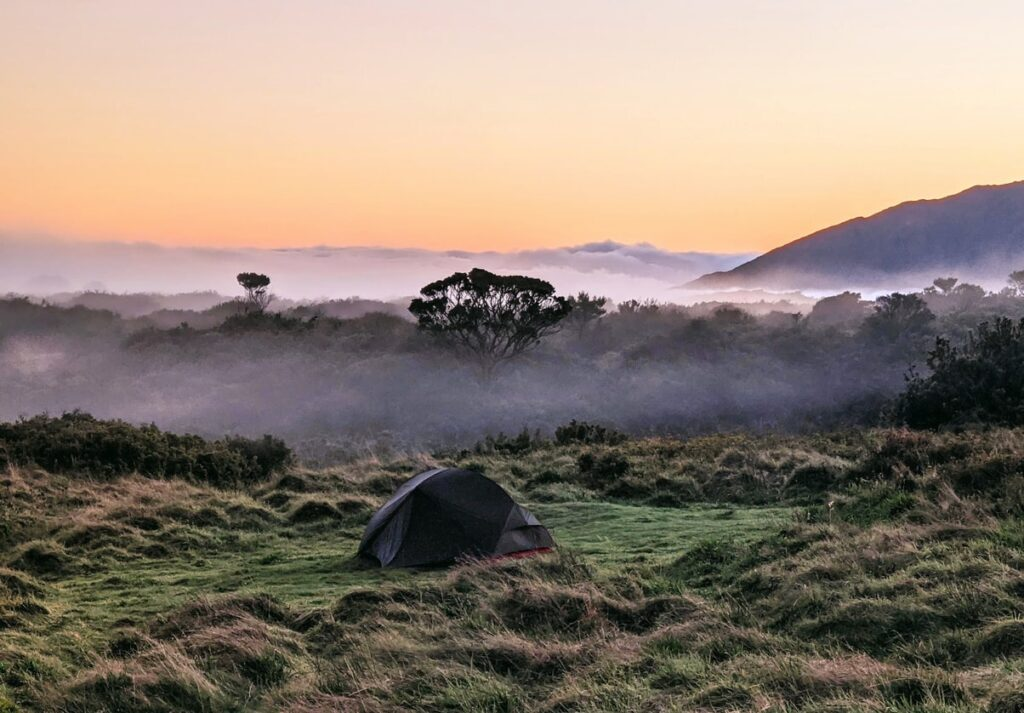 Dispersed Camping Guide