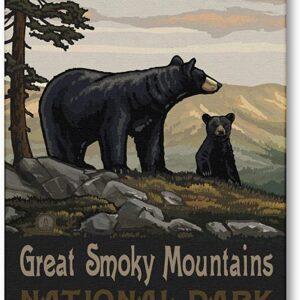 Great Smoky Mountains Black Bears Wall Art