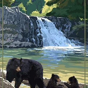 Great Smoky Mountains National Park Abrams Falls Poster