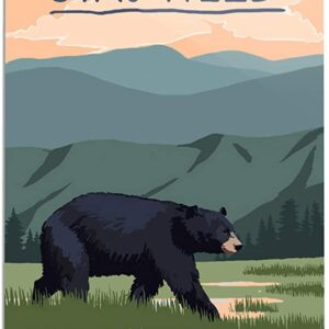 Great Smoky Mountains National Park Stay Wild Poster