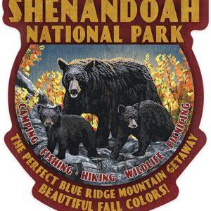 Shenandoah National Park Virginia Decal
