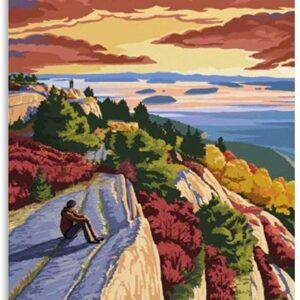 Acadia Cadillac Mountain Art Print