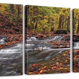 Cuyahoga Valley National Park 3 Panel Print