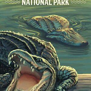 Everglades National Park Alligator Poster