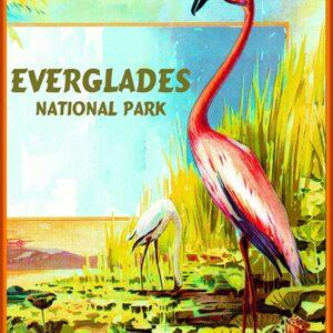 Everglades National Park Florida Flamingo Print