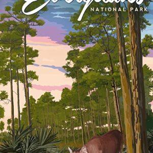 Everglades National Park Panther Poster