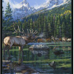 Glacier National Park Elk Poster