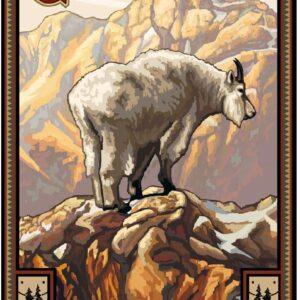 Glacier National Park Mountain Goat Poster