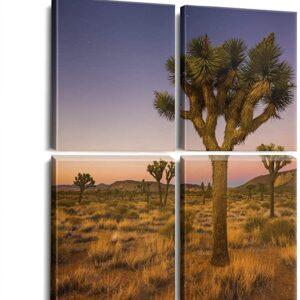 Joshua Tree National Park 4 Panel Print
