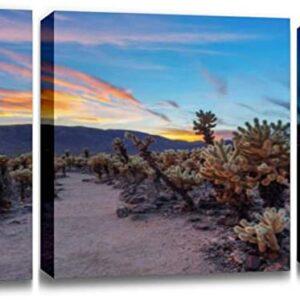 Joshua Tree National Park Cholla Cactus Print