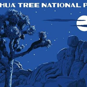Joshua Tree National Park Full Moon Poster