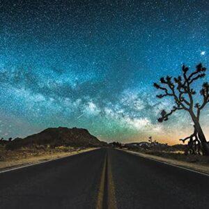 Joshua Tree National Park Night Sky Print