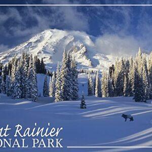 Mount Rainier National Park Snowy Landscape Art Print