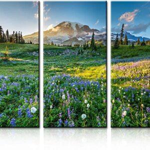 Mount Rainier National Park Tri Panel Print