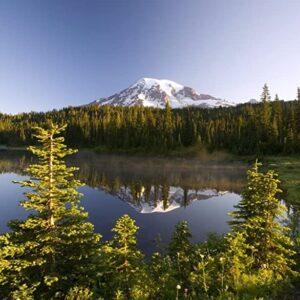 Mount Rainier National Park Washington Poster