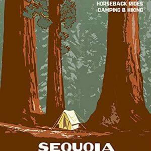 National Park Service Sequoia National Park Poster