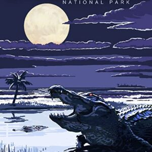 Night Everglades National Park Gator Print