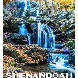 Nps Shenandoah National Park Print