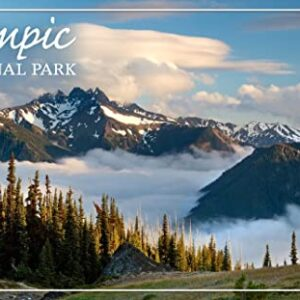 Olympic National Park Deer Park Poster