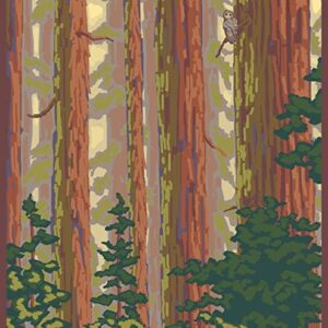 Olympic National Park Hoh Rainforest Print
