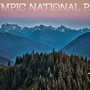 Olympic National Park Hurricane Ridge Poster