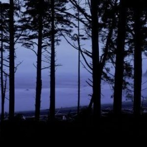 Olympic National Park Panoramic Print