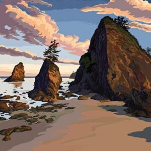 Olympic National Park Ruby Beach Poster