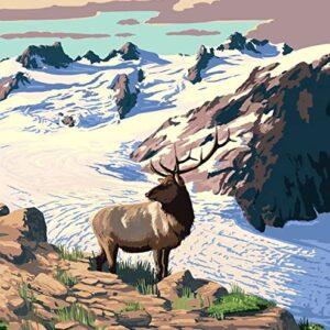 Olympic National Park Washington Poster