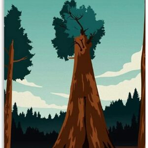 Sequoia National Park Canvas Poster