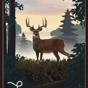 Sequoia National Park Deer Poster