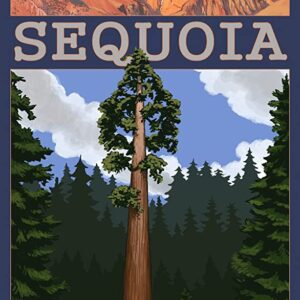 Sequoia National Park Palisades Poster