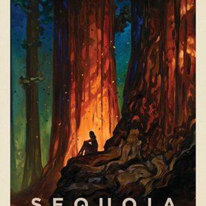 Sequoia National Park Retro Poster