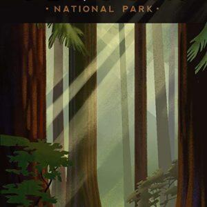 Sequoia National Park Rewood Forrest Poster