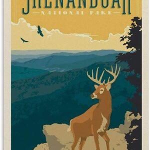 Shenandoah National Park Deer Poster