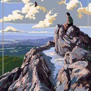 Shenandoah National Park Stony Man Cliffs Poster