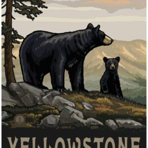 Yellowstone National Park Bear And Cub Poster