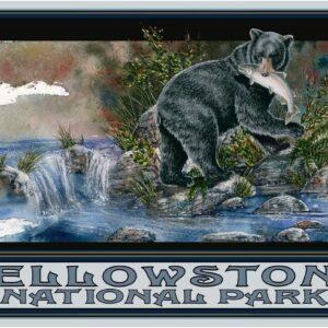 Yellowstone National Park Black Bear Poster