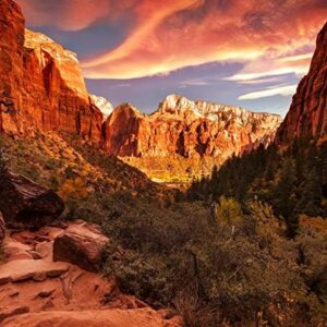 Zion Valley National Park Navajo Sandstone Print