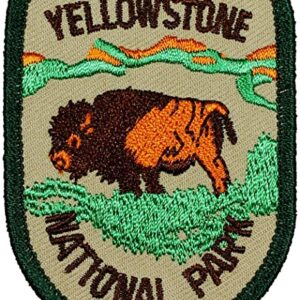 Vintage Yellowstone National Park Bison Patch