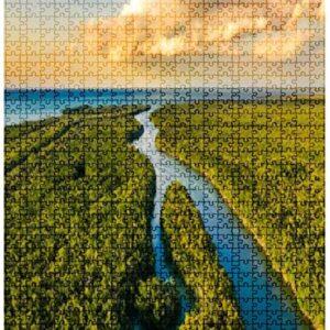 1000 Piece Everglades National Park Puzzle