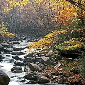 1000 Piece Great Smoky Mountains National Park Little River Puzzle