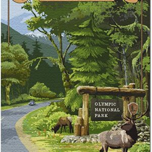 1000 Piece Olympic National Park Jigsaw Puzzle
