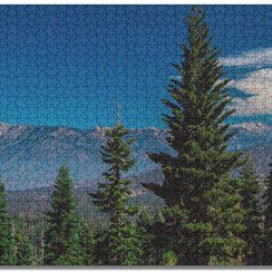 1000 Piece Sequoia National Park Puzzle