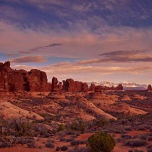 1000 Piece Wooden Arches National Park Jigsaw Puzzle