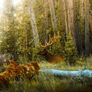 1000 Piece Yellowstone National Park Elk Puzzle