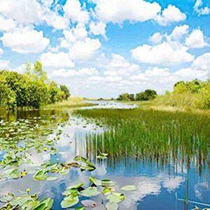 500 Piece Everglades National Park Puzzle
